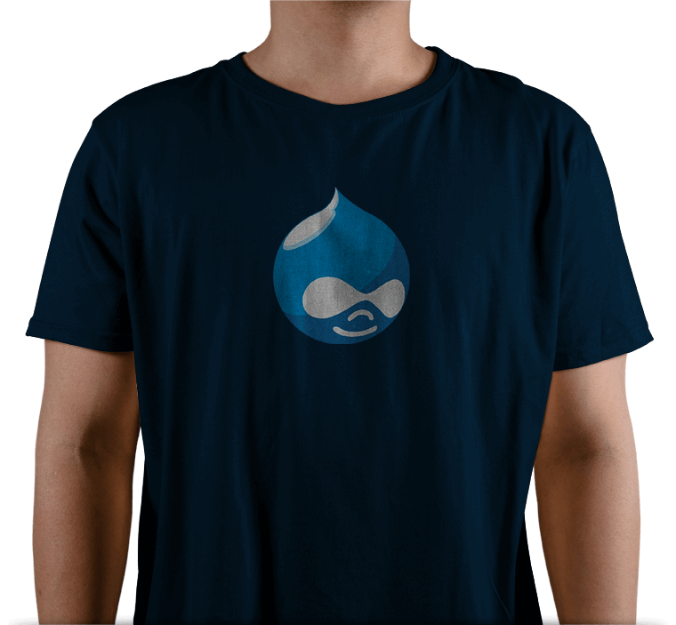 Why Hire Drupal Developers from FasTrax Infotech?