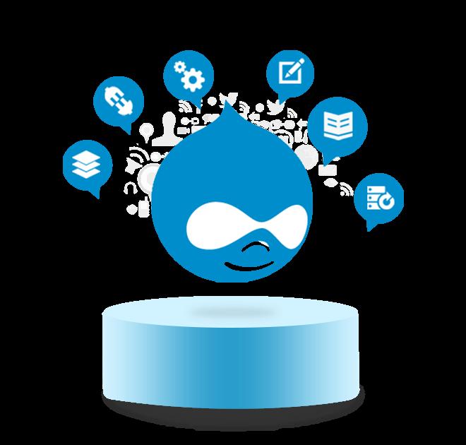 Building Enterprise-Level Customized Drupal Solutions
