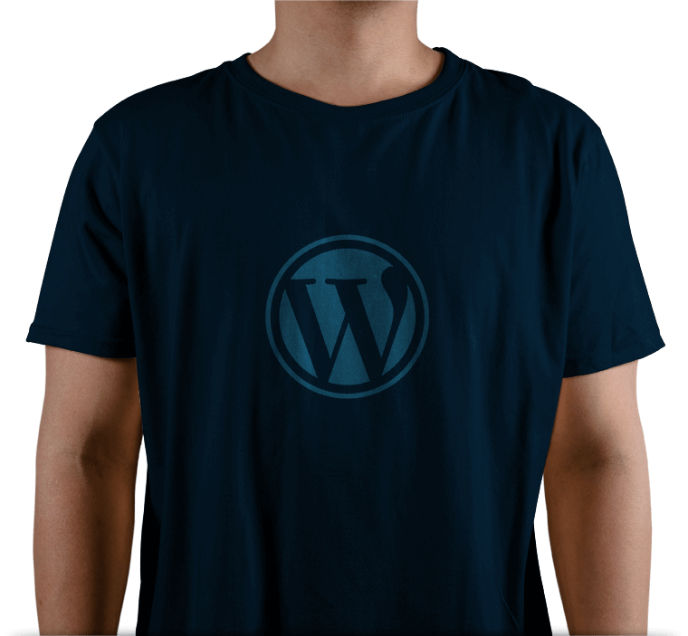 Why Choose FasTrax Infotech for WordPress Development Services?
